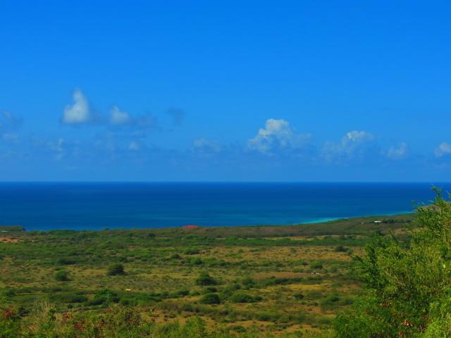 Terrain pour l Vente à 48 Grange Stock Estate CO St Croix, Virgin Islands Isles Vierges Américaines