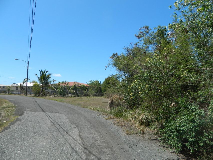 Land for Sale at 114 Cane WE 114 Cane WE St Croix, Virgin Islands 00820 United States Virgin Islands