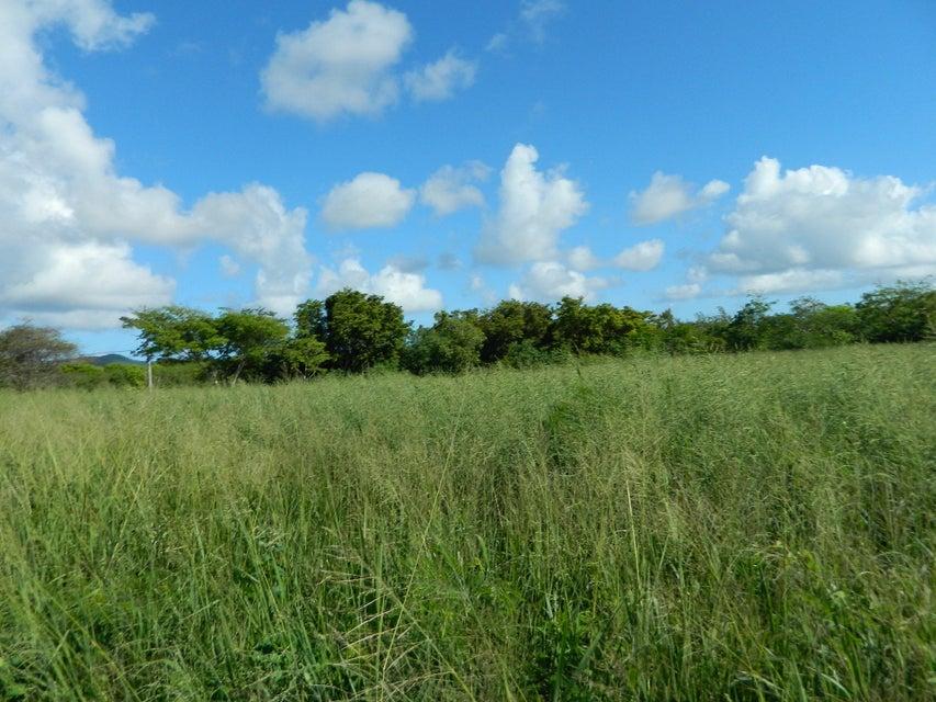 Terrain pour l Vente à 119 Enfield Green PR 119 Enfield Green PR St Croix, Virgin Islands 00820 Isles Vierges Américaines