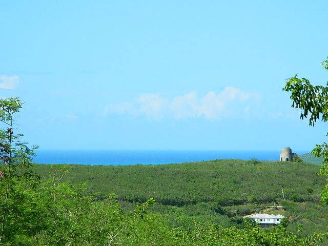 Land for Sale at 89 Hope & Carton Hill EB 89 Hope & Carton Hill EB St Croix, Virgin Islands 00820 United States Virgin Islands