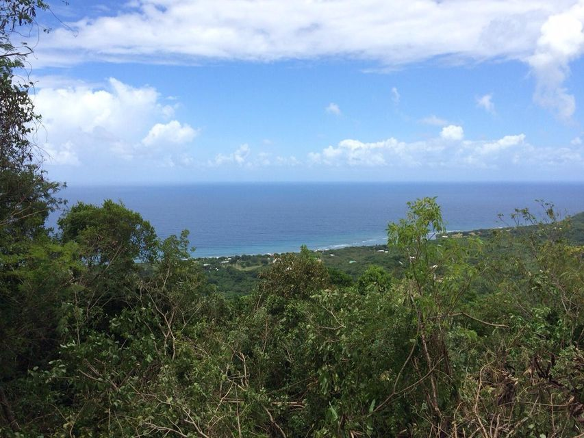 Additional photo for property listing at 81B Belvedere NB 81B Belvedere NB St Croix, Virgin Islands 00840 United States Virgin Islands