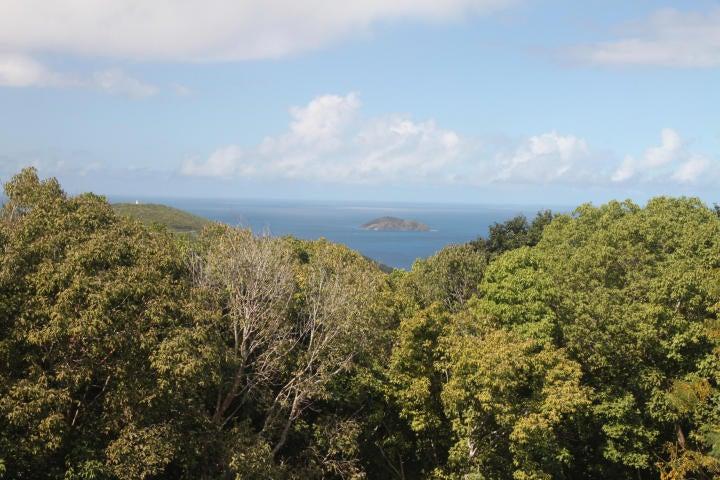 Casa Multifamiliar por un Venta en 49 Fortuna WE 49 Fortuna WE St Thomas, Virgin Islands 00802 Islas Virgenes Ee.Uu.