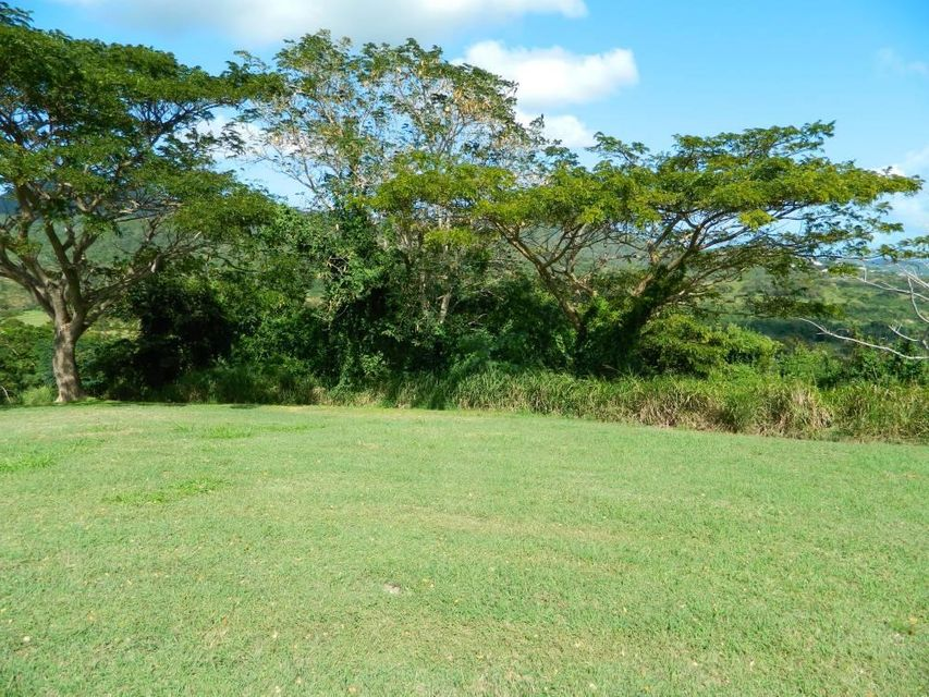 Additional photo for property listing at 23 River PR 23 River PR St Croix, Virgin Islands 00820 Isles Vierges Américaines