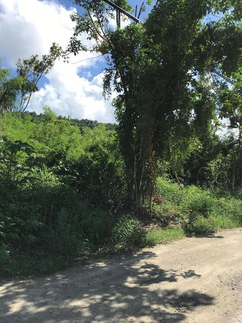 Additional photo for property listing at 3 & 3E Northside NA 3 & 3E Northside NA St Croix, Virgin Islands 00840 Isles Vierges Américaines