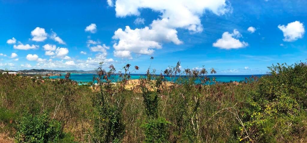 Terrain pour l Vente à 42 & 43 Shoys (The) EA St Croix, Virgin Islands Isles Vierges Américaines
