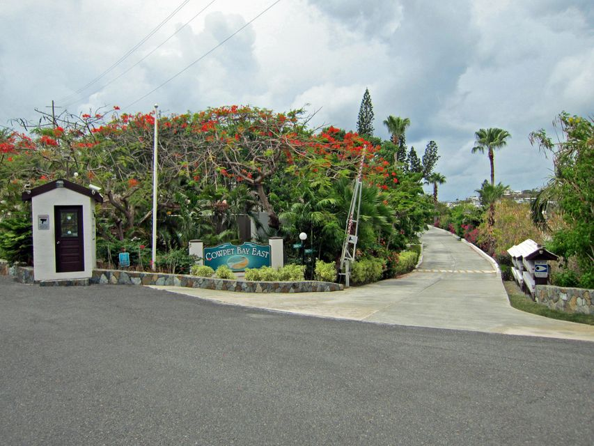 Additional photo for property listing at Cowpet Bay East 21 Tara Nazareth RH Cowpet Bay East 21 Tara Nazareth RH 圣托马斯, 维京群岛 00802 美属维尔京群岛