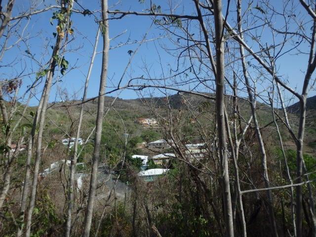 Land for Sale at 135 Eliza's Retreat EA 135 Eliza's Retreat EA St Croix, Virgin Islands 00820 United States Virgin Islands