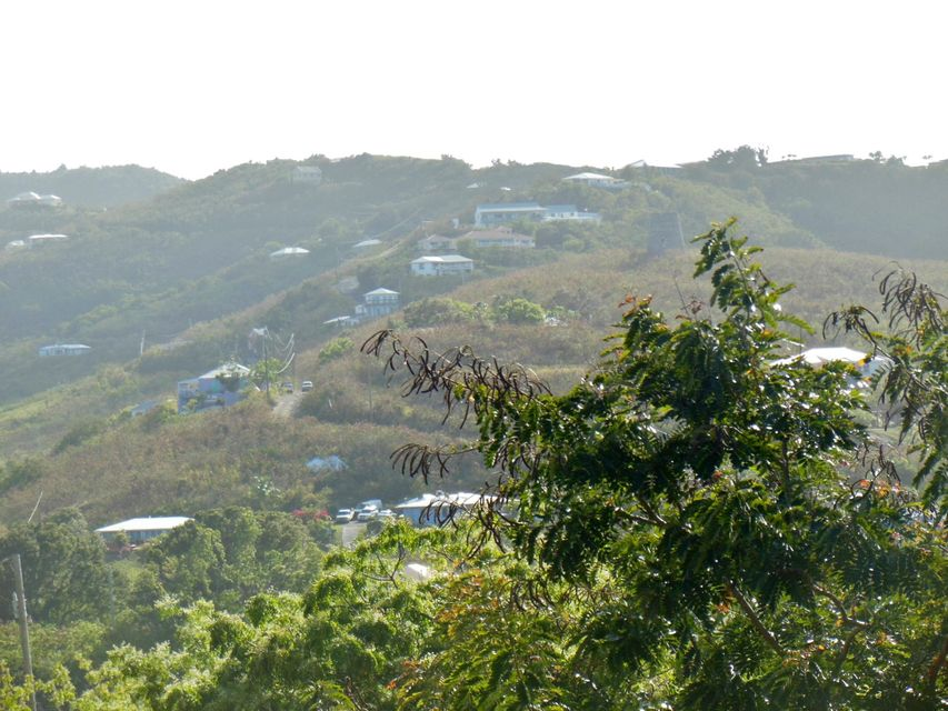 Land for Sale at 177 Cotton Valley EB 177 Cotton Valley EB St Croix, Virgin Islands 00820 United States Virgin Islands