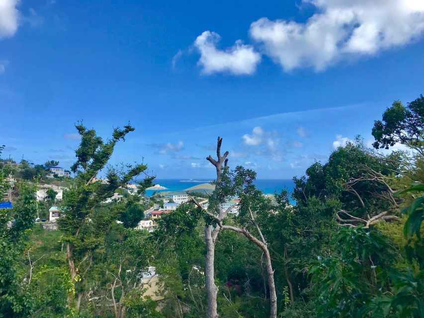 Additional photo for property listing at 1B-29 Solberg LNS 1B-29 Solberg LNS St Thomas, Virgin Islands 00802 Виргинские Острова