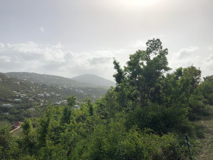 Additional photo for property listing at 22-15 Mandahl GNS 22-15 Mandahl GNS St Thomas, Virgin Islands 00802 Islas Virgenes Ee.Uu.