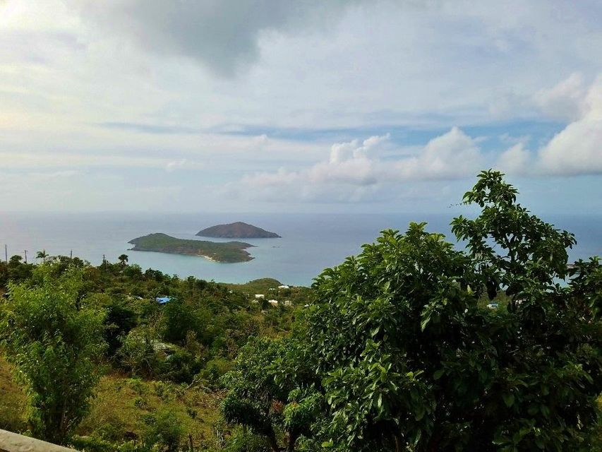 Additional photo for property listing at 10A Dorothea LNS 10A Dorothea LNS St Thomas, Virgin Islands 00802 United States Virgin Islands