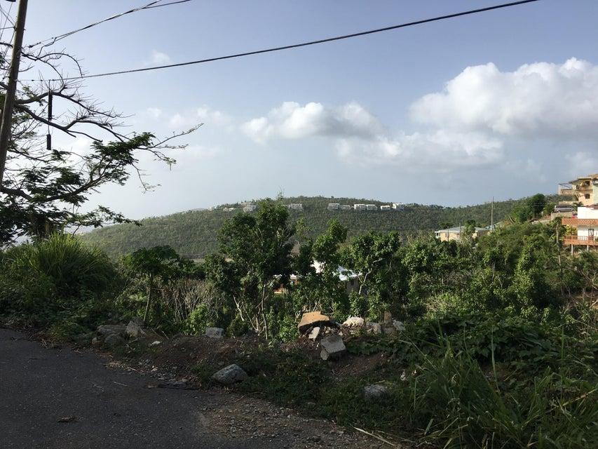 Земля для того Продажа на 1-115 Wintberg GNS 1-115 Wintberg GNS St Thomas, Virgin Islands 00802 Виргинские Острова