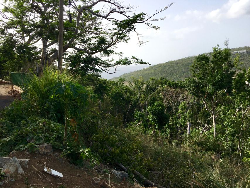 Additional photo for property listing at 1-115 Wintberg GNS 1-115 Wintberg GNS St Thomas, Virgin Islands 00802 Виргинские Острова
