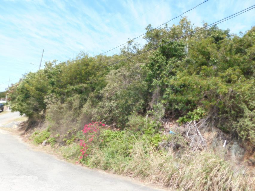 Additional photo for property listing at 37-37 Frydenhoj RH 37-37 Frydenhoj RH St Thomas, Virgin Islands 00802 Islas Virgenes Ee.Uu.