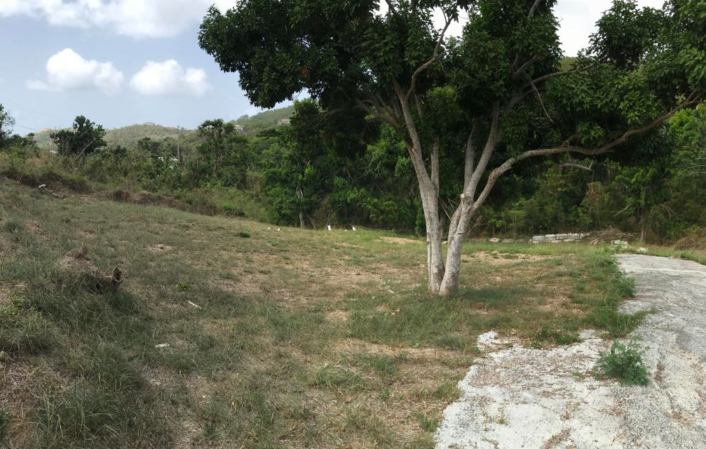 Additional photo for property listing at 34ofPCL137 Mt. Welcome EA 34ofPCL137 Mt. Welcome EA St Croix, Virgin Islands 00820 Виргинские Острова