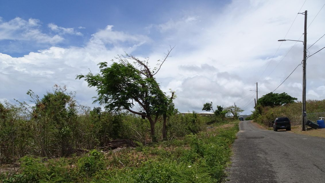 Additional photo for property listing at 140 Two Brothers WE 140 Two Brothers WE St Croix, Virgin Islands 00840 Islas Virgenes Ee.Uu.