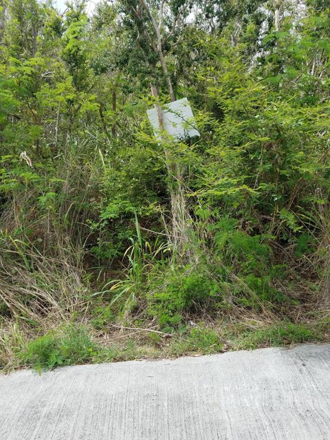 Additional photo for property listing at 11-4-1 Langmath RH 11-4-1 Langmath RH St Thomas, Virgin Islands 00802 United States Virgin Islands