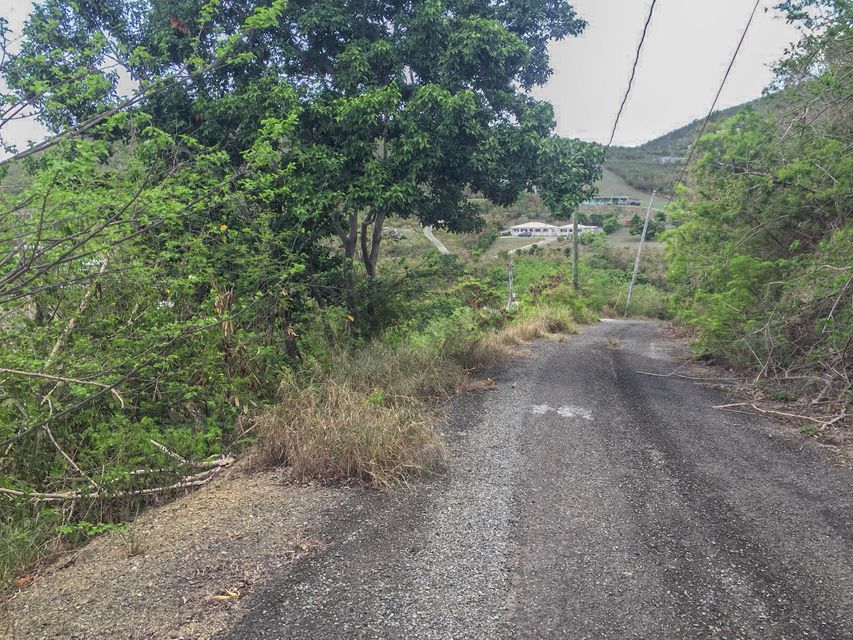 Additional photo for property listing at 262 Union & Mt. Washington EA 262 Union & Mt. Washington EA St Croix, Virgin Islands 00820 Islas Virgenes Ee.Uu.