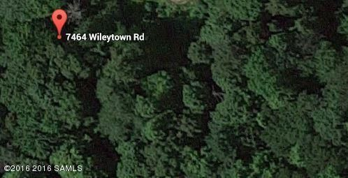 7464 wileytown, Middle Grove, NY 12850