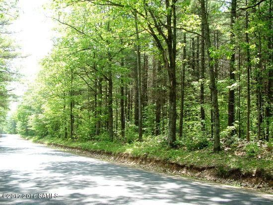 Trout Pond Road, Chestertown, NY 12817