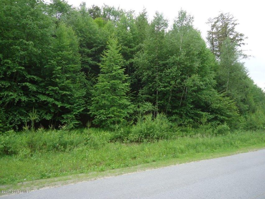 Lot 9 Schaffer Brook Lane, Lake Luzerne, NY 12846