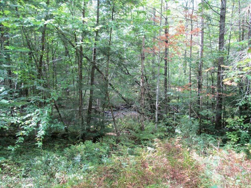 Horseshoe Pond Road, Schroon Lake, NY 12870