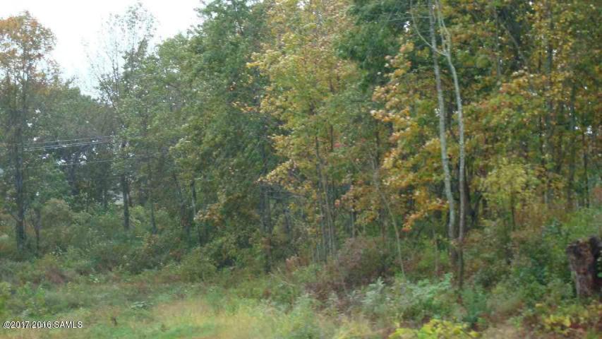 Branch Road, Stony Creek, NY 12878