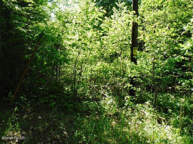 0035 Main Blvd and Phinneyville Ringtown,Pennsylvania 17967,Comm/ind sale,Main Blvd and Phinneyville,15-5056