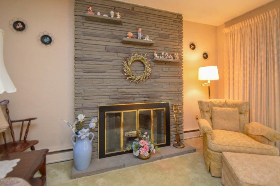 Bluestone Fireplace