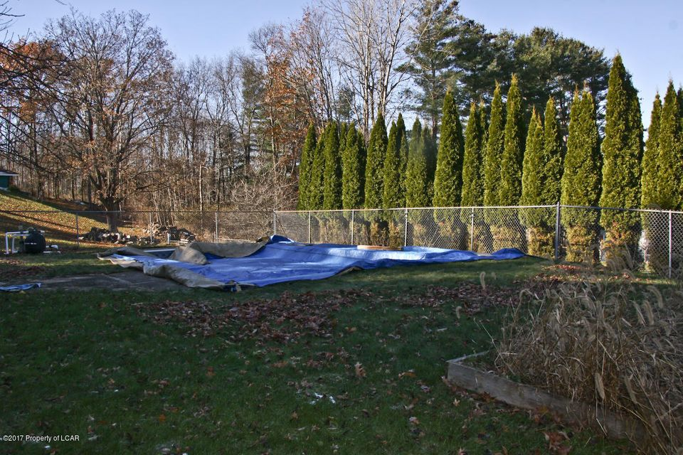 Yard/Pool