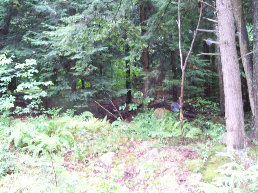LOT 29 HILARY LANE,Laporte,PA 18626,Land,HILARY,WB-77622