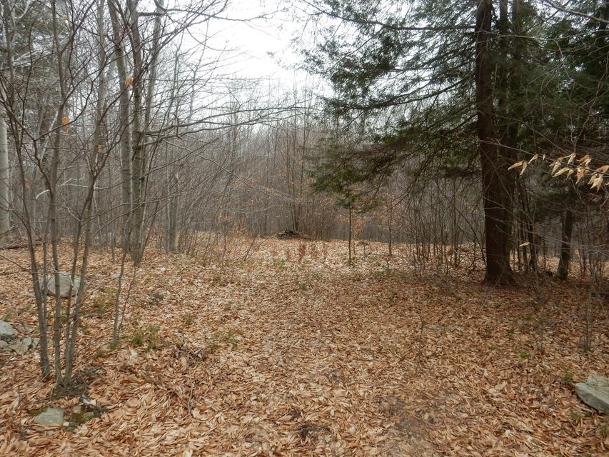 LOT 4 GROUSE WOODS ROAD,Laporte,PA 18626,Land,GROUSE WOODS,WB-80028