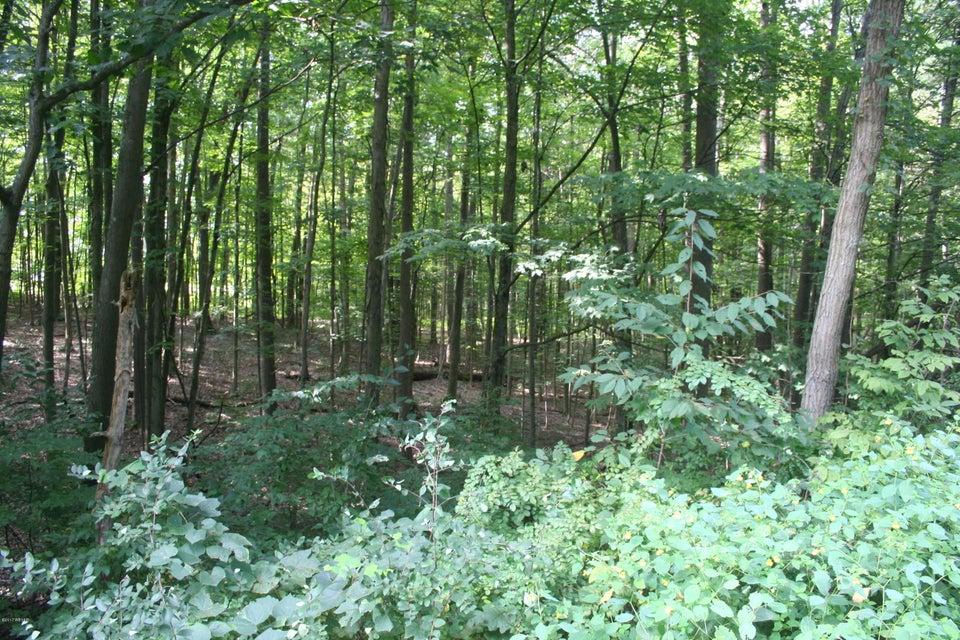 SUSQUEHANNA TRAIL,Muncy,PA 17756,Land,SUSQUEHANNA,WB-82013