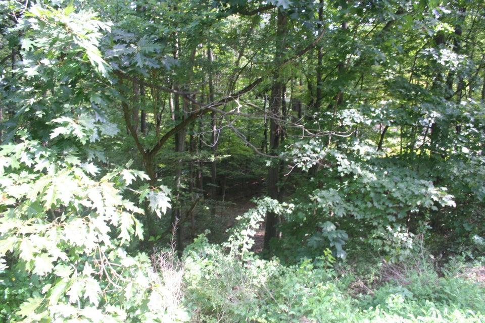 SUSQUEHANNA TRAIL,Muncy,PA 17756,Land,SUSQUEHANNA,WB-82015