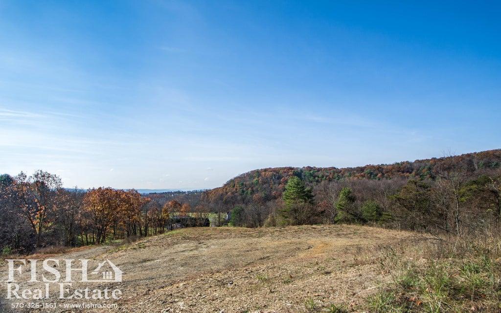 76 WISTAR ROAD,Hughesville,PA 17737,Land,WISTAR,WB-82596