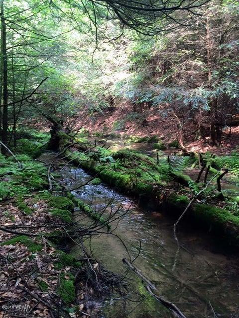LOT 33 BLACK BEAR TRAIL,Loganton,PA 17747,Land,BLACK BEAR,WB-82941