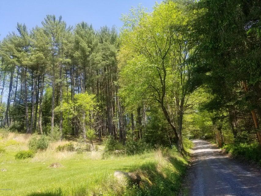 MOUNTAIN AVENUE,Cammal,PA 17723,Land,MOUNTAIN,WB-84139