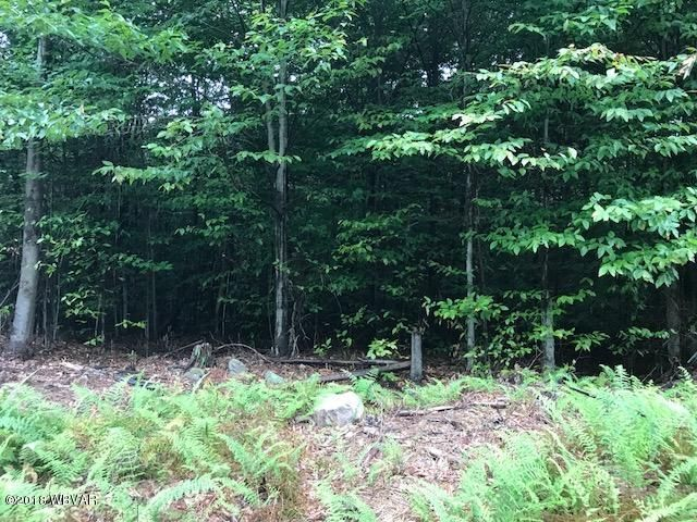 LOT 13 GROUSE WOODS DRIVE,Muncy Valley,PA 17758,Land,GROUSE WOODS,WB-85079