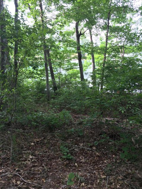 LOT 45 S STONEY POINT Rd, Double Springs, AL 35553
