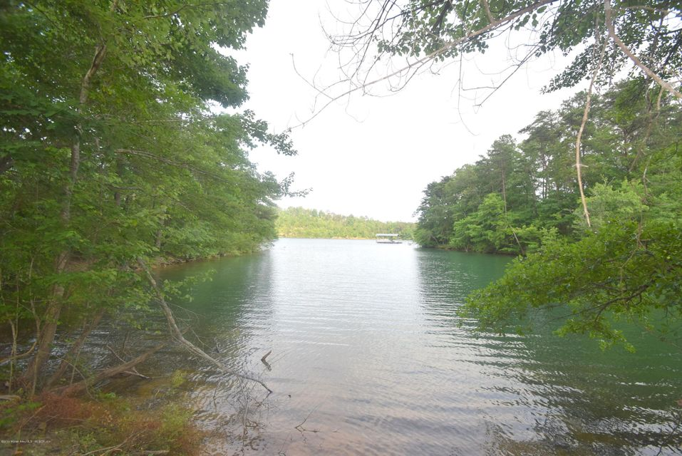 LOT 29 BANKHEAD POINTE, Double Springs, AL 35553