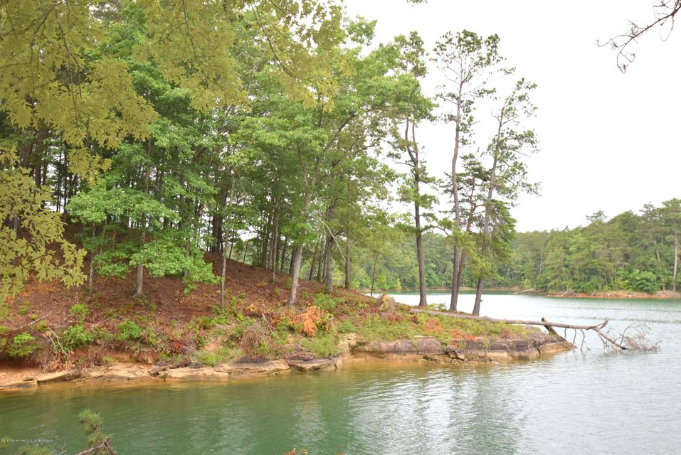 LOT 60&61 SIPSEY OVERLOOK, Double Springs, AL 35553