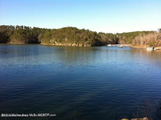 72 & 132 SIPSEY OVERLOOK, Double Springs, AL 35553