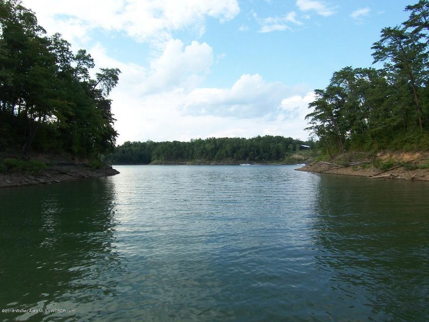 LOT 22 COUNTY ROAD 113, Cullman, AL 35057