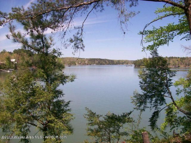 LOT #43 BRUSHY CREEK MAIN, Arley, AL 35541