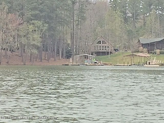 1014 LAKESHORE DRIVE, Double Springs, AL 35553