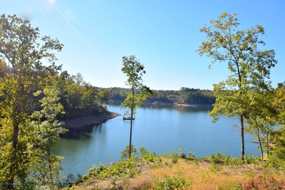 LOT 51 BRUSHY CREEK POINTE, Arley, AL 35541