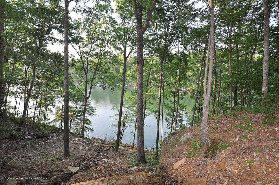 LOT #4 THE BLUFFS AT BRUSHY POND, Bremen, AL 35033