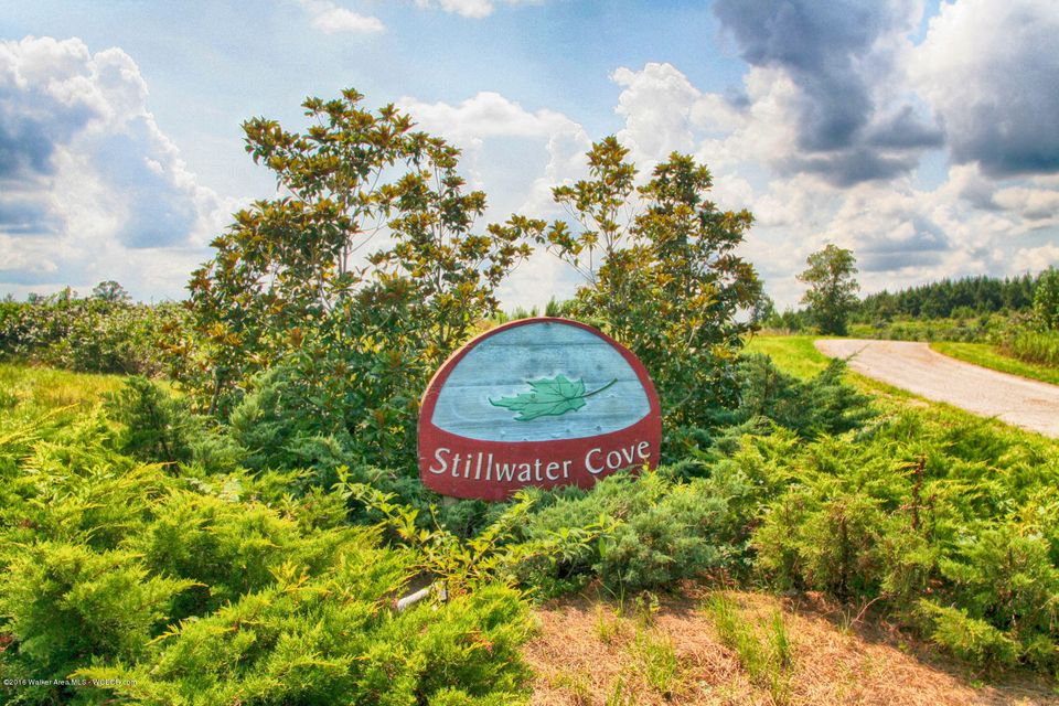 LOT 31 STILLWATER COVE, Double Springs, AL 35553