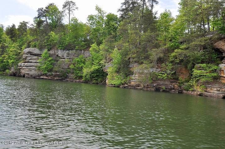 LOT #39 ROCKY SPRINGS, Bremen, AL 35033