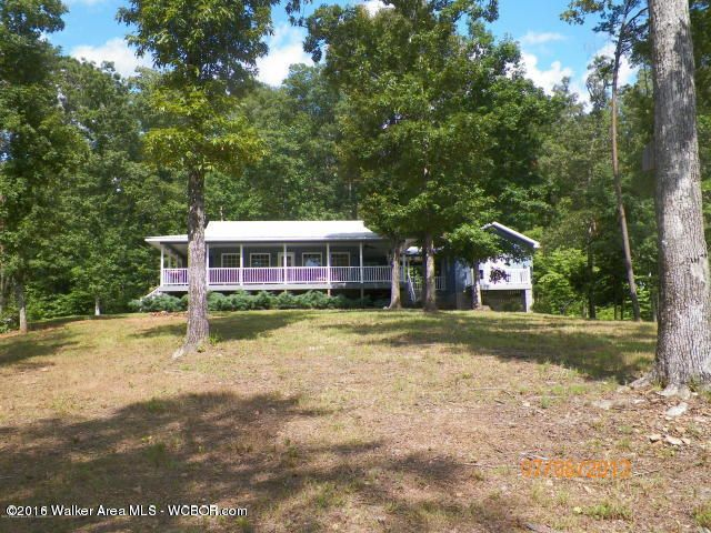 1202 FOREST SERVICE ROAD, Arley, AL 35541